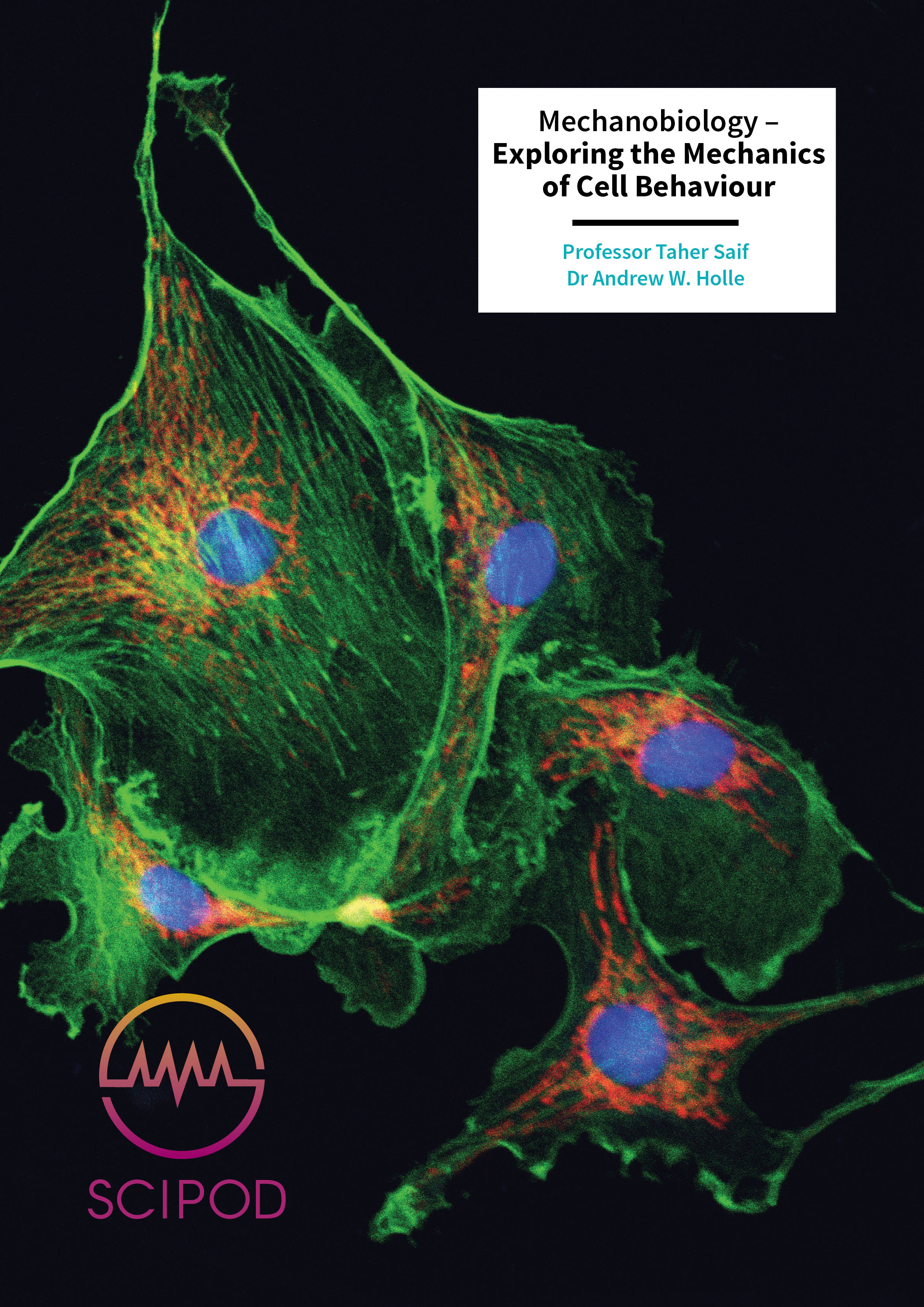 Mechanobiology – Exploring the Mechanics of Cell Behaviour – Professor Taher Saif and Dr Andrew W. Holle