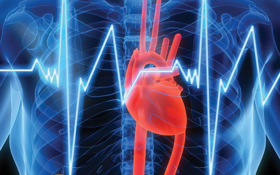 Sphingolipids Fats that Protect the Heart – Dr Annarita Di Lorenzo, Cornell University