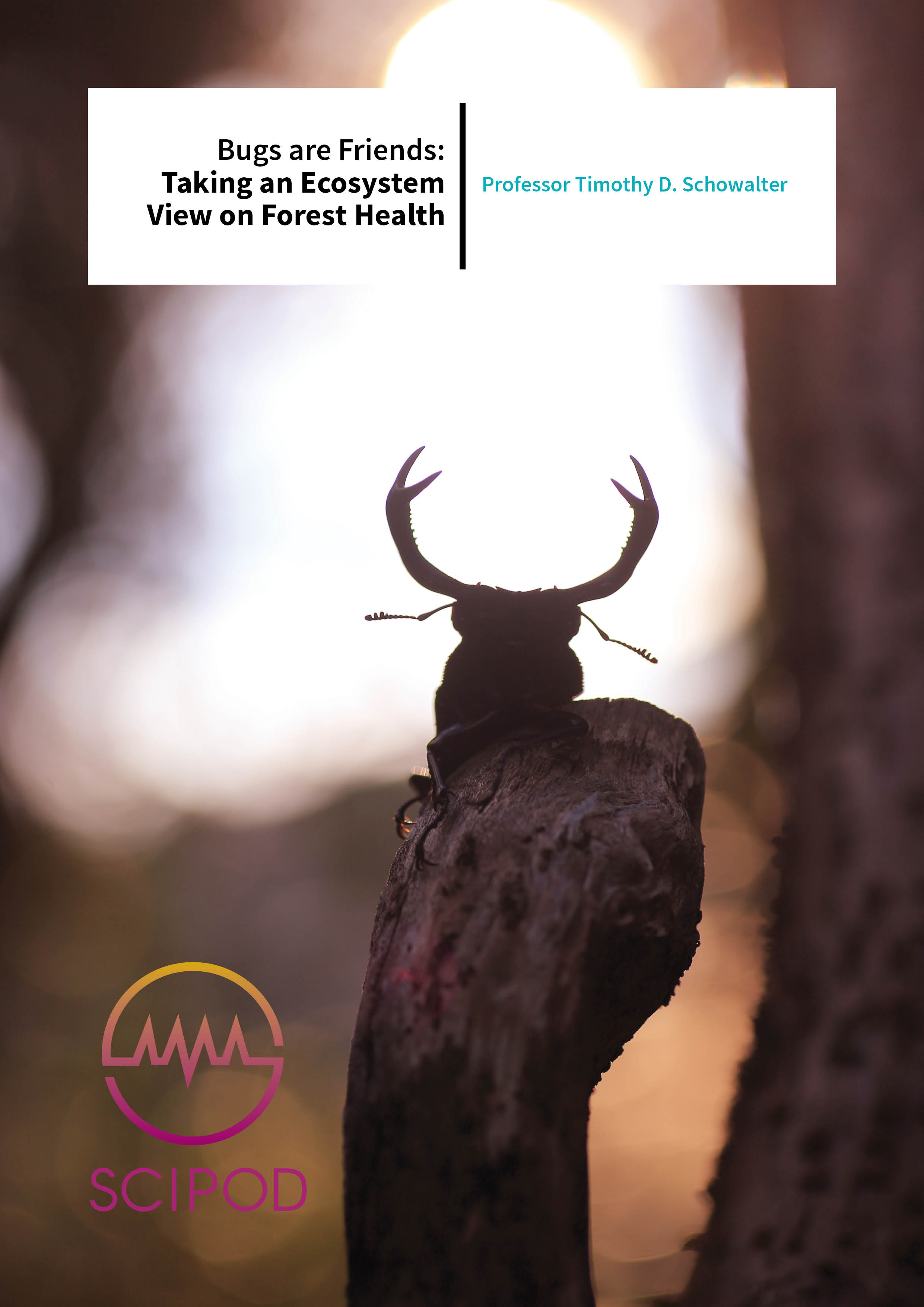 Bugs are Friends Taking an Ecosystem View on Forest Health – Professor Timothy D. Schowalter, Louisiana State University