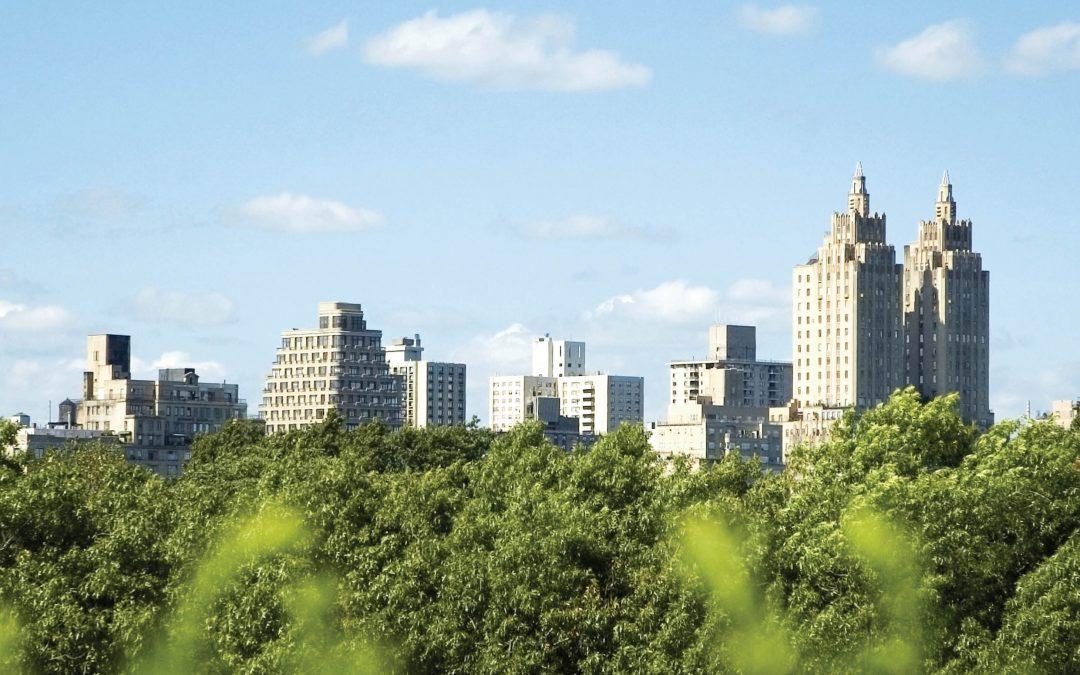 Trees – the True Urban Warriors – Dr Nina Bassuk, Cornell University
