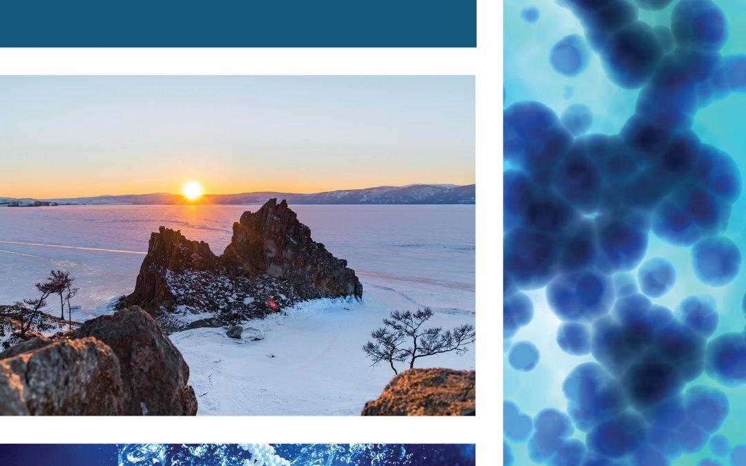 Frozen in Time: The Permafrost Microbiome – Professor Rachel Mackelprang, California State University, Northridge