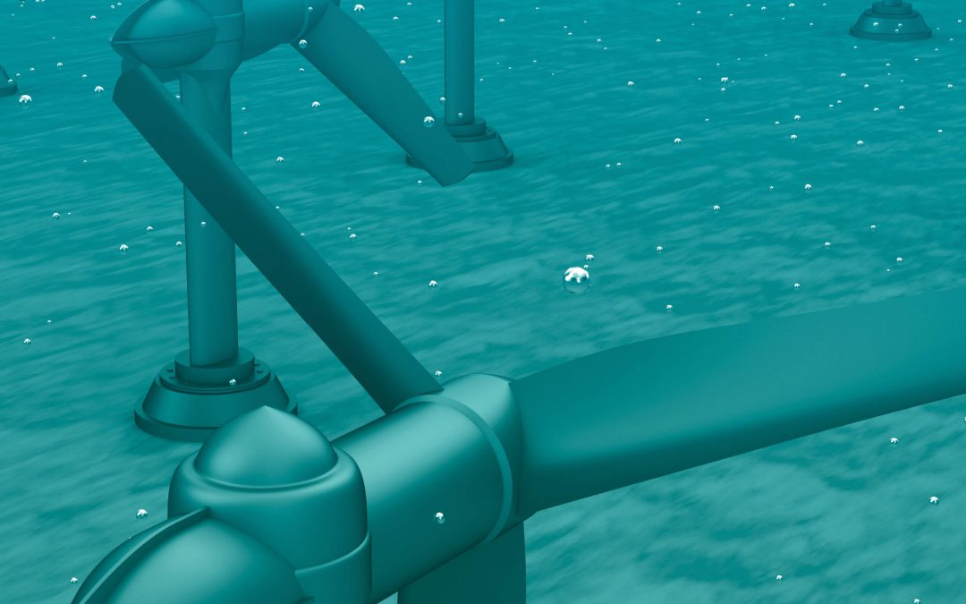 Towards Low-Cost, Low-Impact Marine Renewable Energy – Drs Grace Chang and Craig Jones, Integral Consulting Inc.
