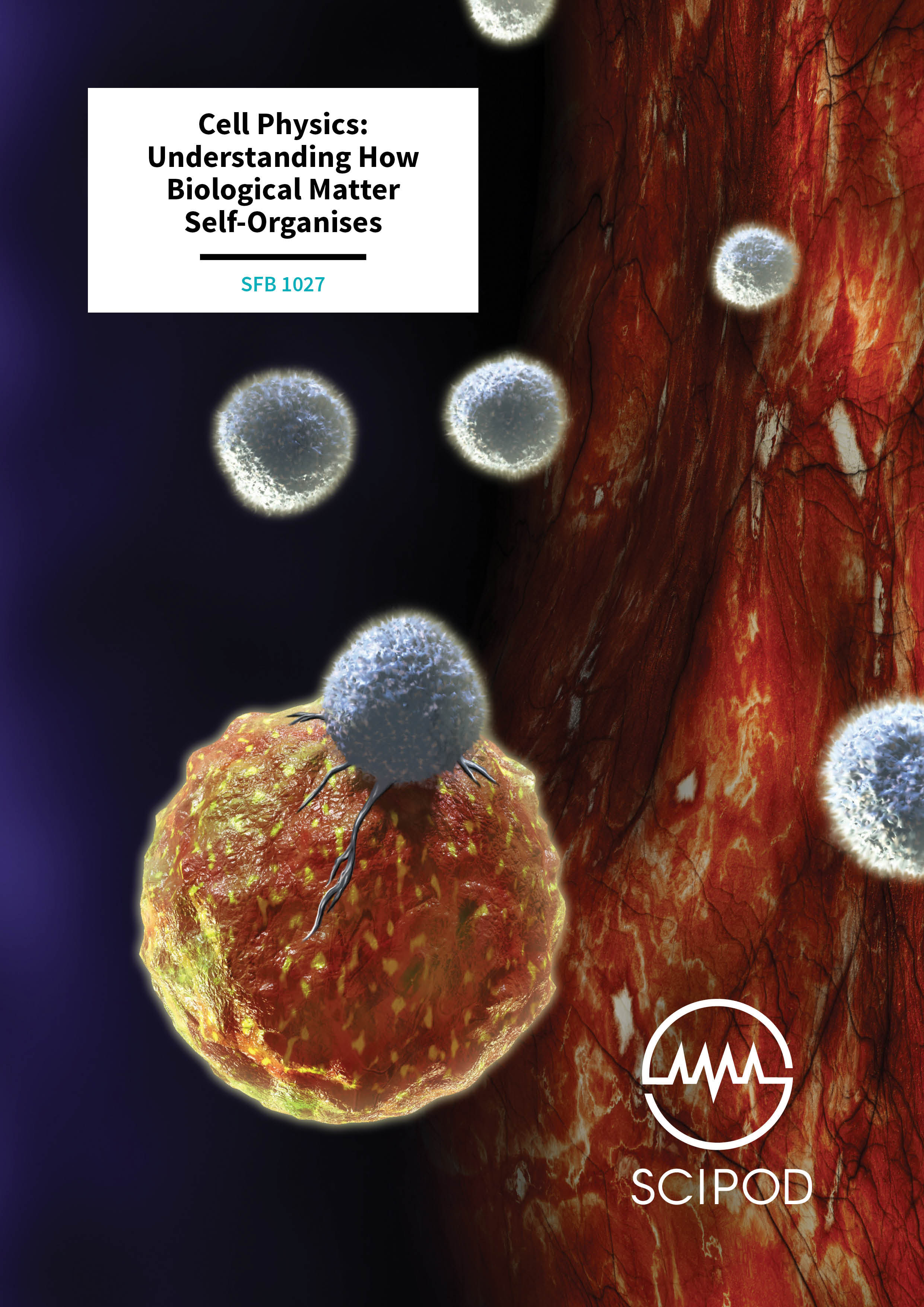 Cell Physics, Understanding How Biological Matter Self-Organises – The Collaborative Research Centre SFB 1027 at the Saarland University