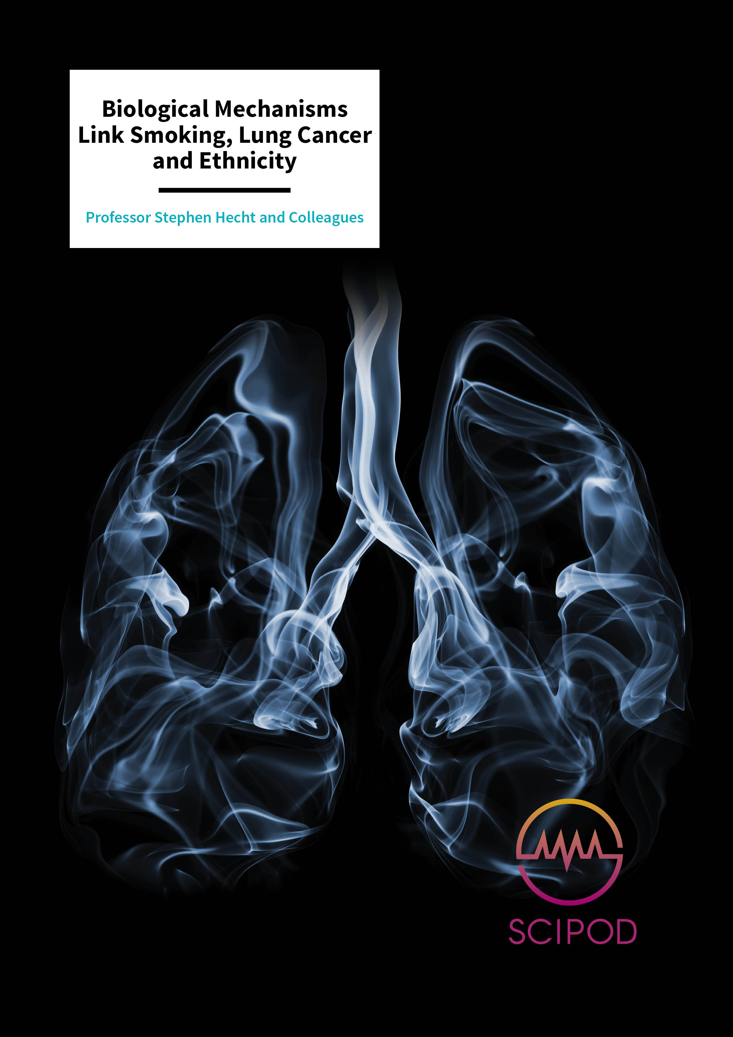 Biological Mechanisms Link Smoking, Lung Cancer and Ethnicity – Professor Stephen Hecht and Colleagues