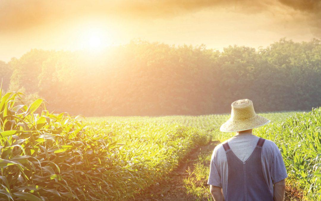 Investigating the Role of Land Use in Climate Change – Professor Qi (Steve) Hu, University of Nebraska-Lincoln