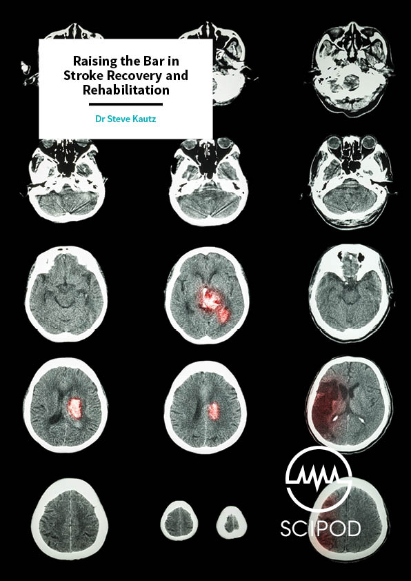 Raising the Bar in Stroke Recovery and Rehabilitation – The Medical University of South Carolina's Center for Biomedical Research Excellence (COBRE)
