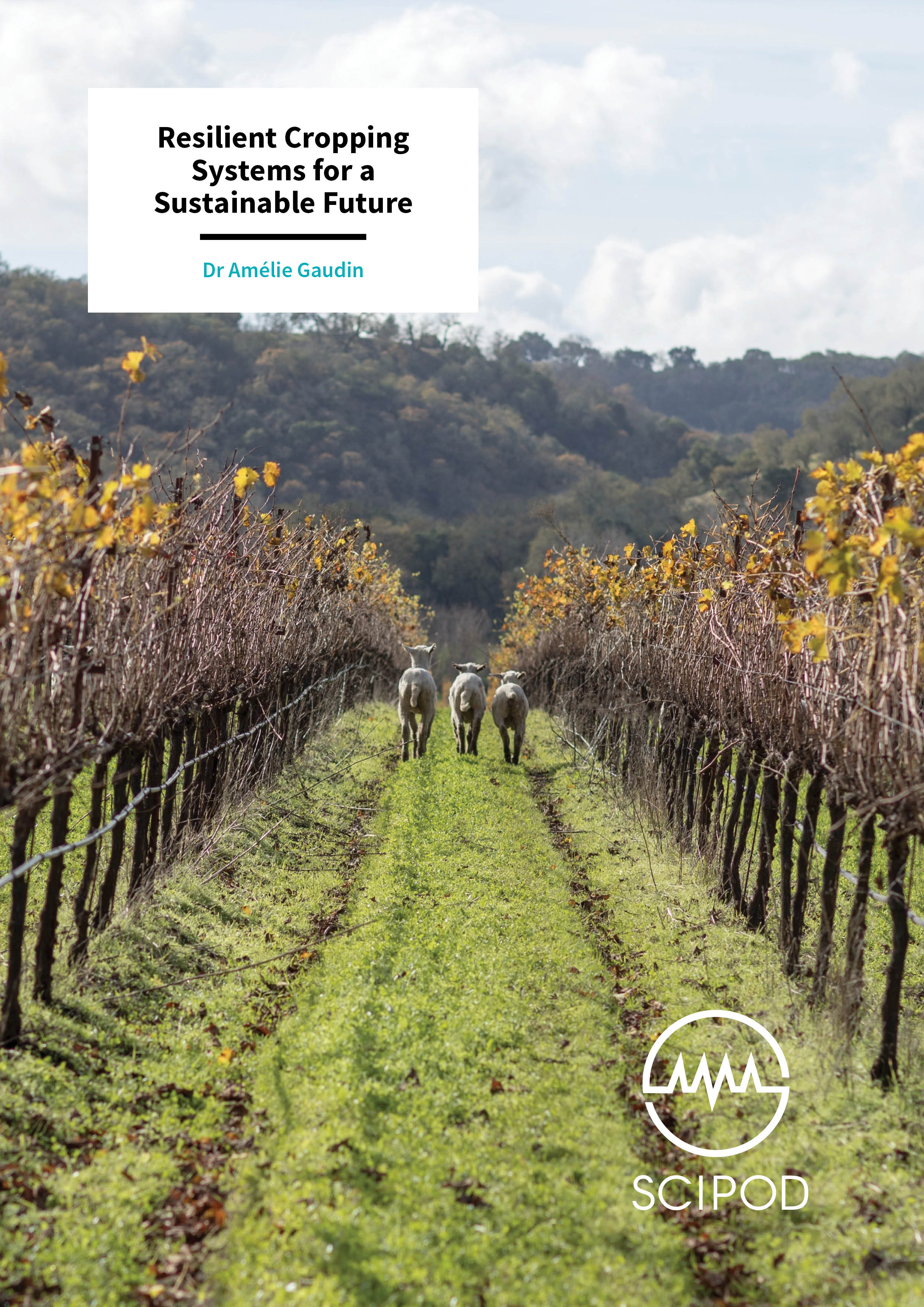 Resilient Cropping Systems for a Sustainable Future – Dr Amélie Gaudin, University of California, Davis