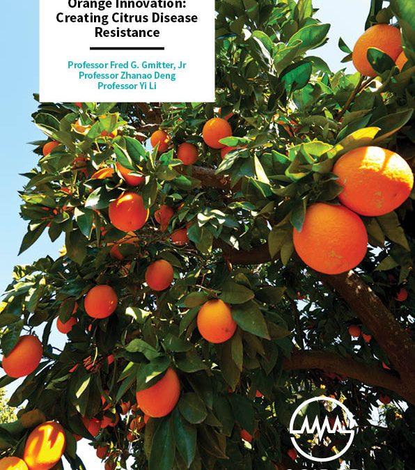 Orange Innovation, Creating Citrus Disease Resistance – Professor Fred G. Gmitter, Jr, Professor Zhanao Deng, Professor Yi Li