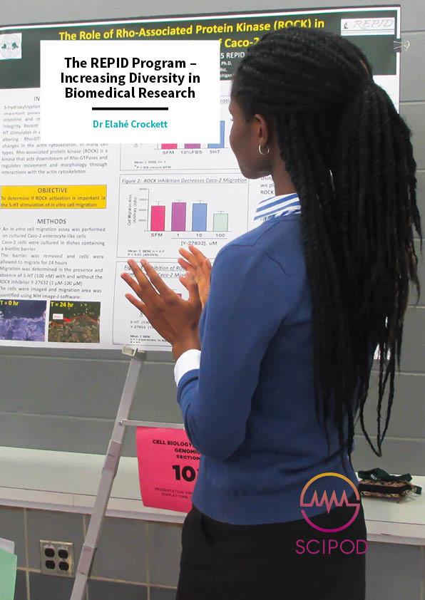 The REPID Program, Increasing Diversity in Biomedical Research – Dr Elahé Crockett, Michigan State University