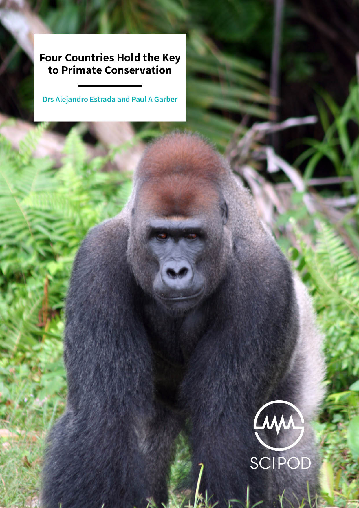 Four Countries Hold the Key to Primate Conservation – Drs Alejandro Estrada and Paul A Garber