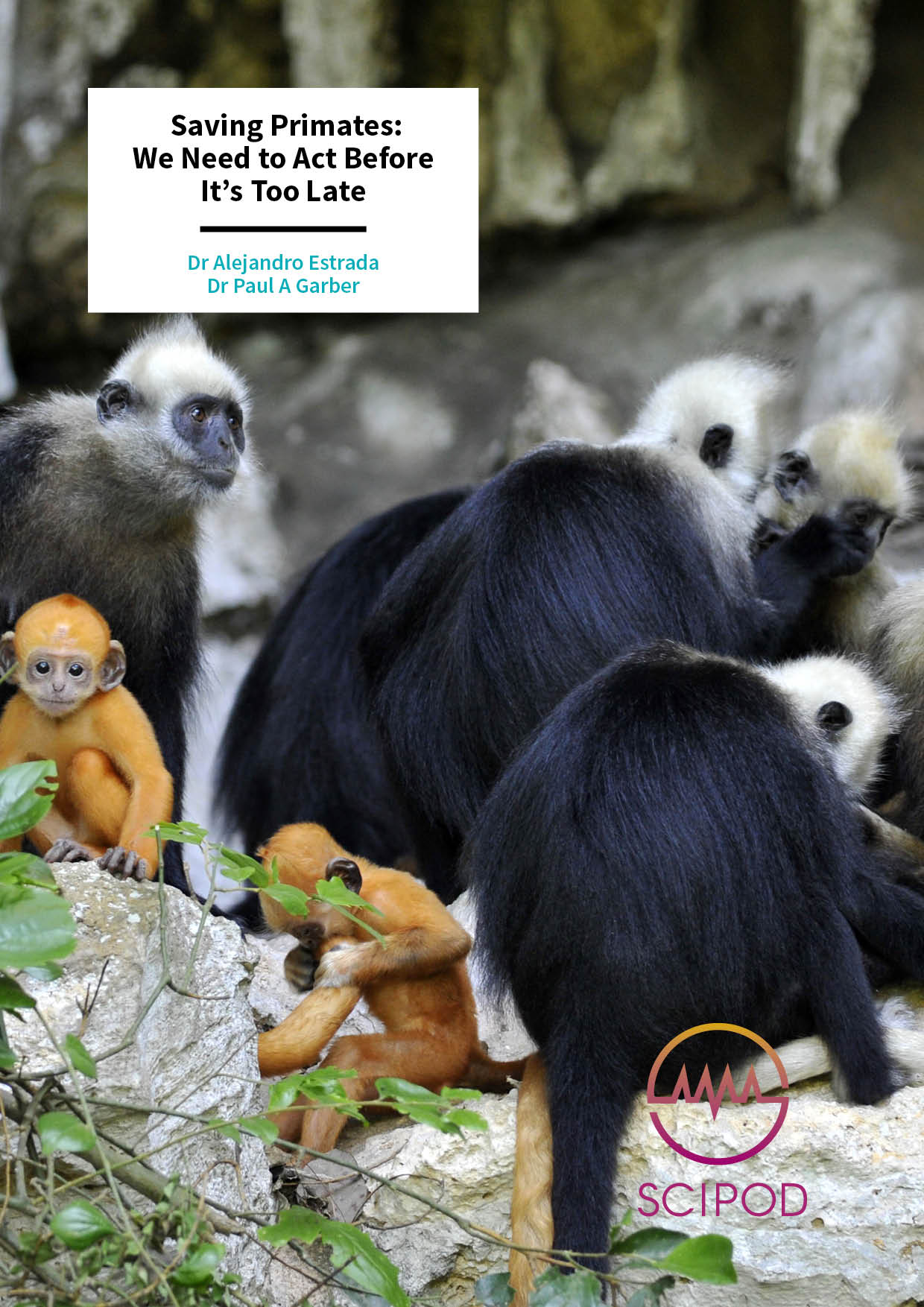 Saving Primates We Need to Act Before It's Too Late – Drs Alejandro Estrada and Paul A Garber