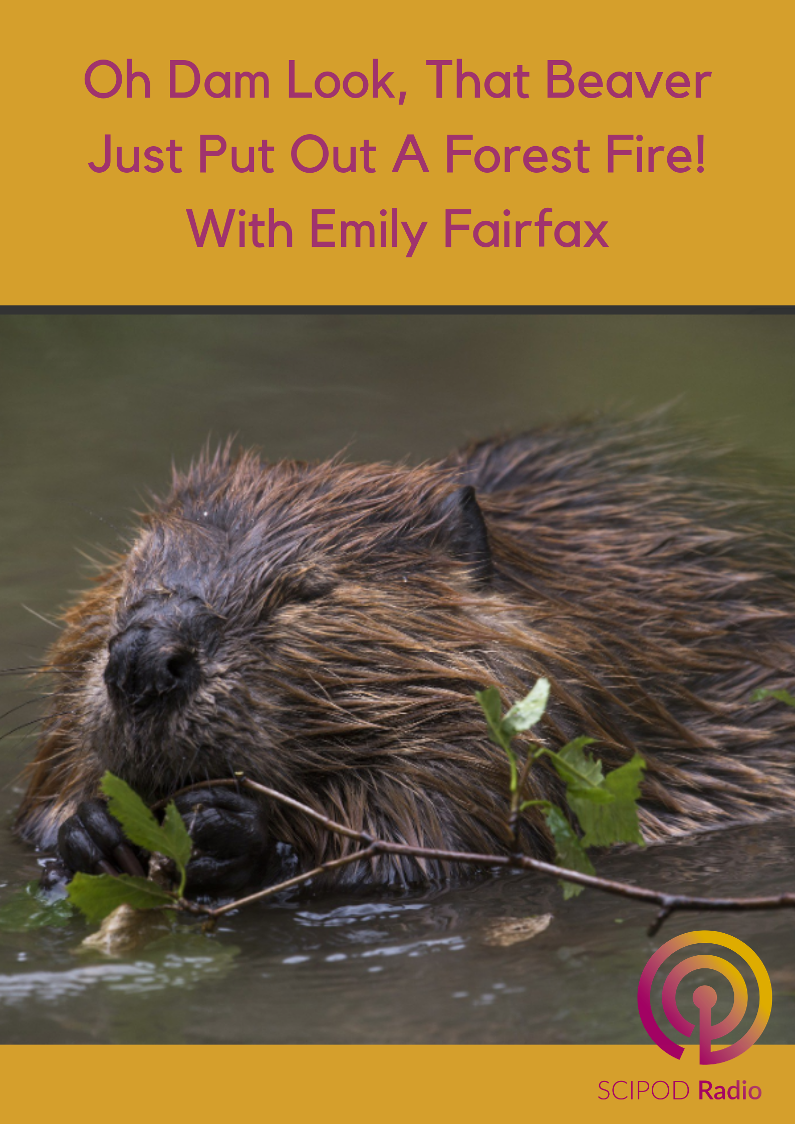 Oh Dam Look, That Beaver Just Put Out A Forest Fire! With Emily Fairfax