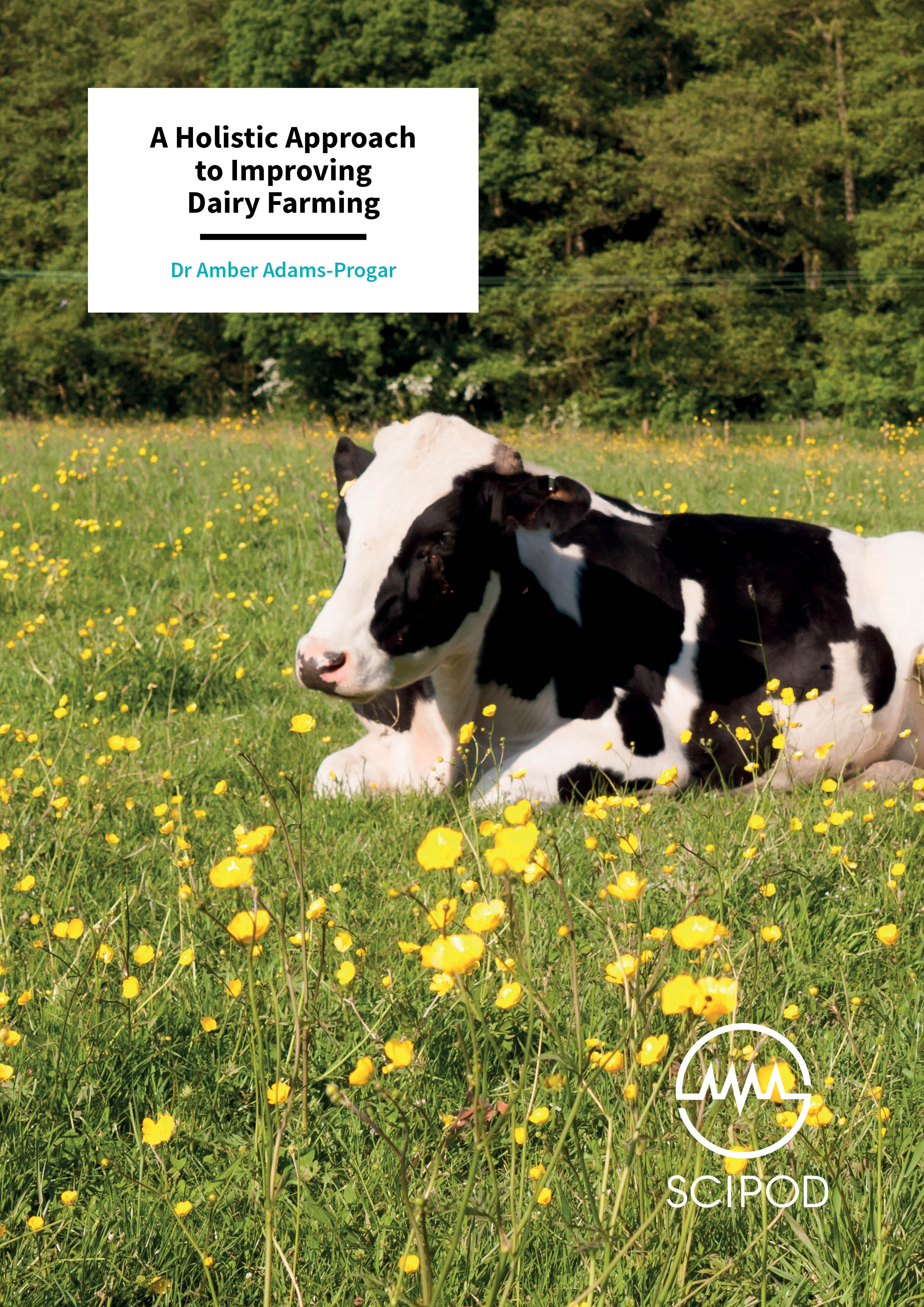 A Holistic Approach to Improving Dairy Farming – Dr Amber Adams-Progar, Washington State University