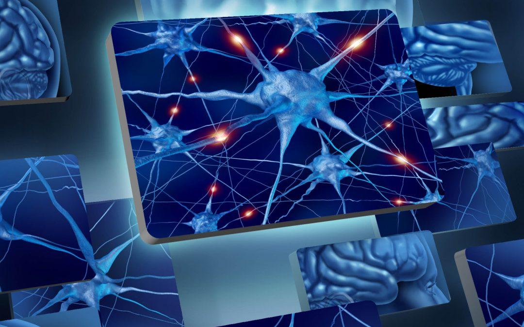 Lifting Brain Fog – Professor Etienne Sibille and Professor James Cook