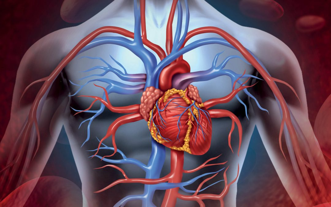 Going with the Flow: New methods for Treating Cardiovascular Disease – Dr York Hsiang, University of British Columbia Vancouver