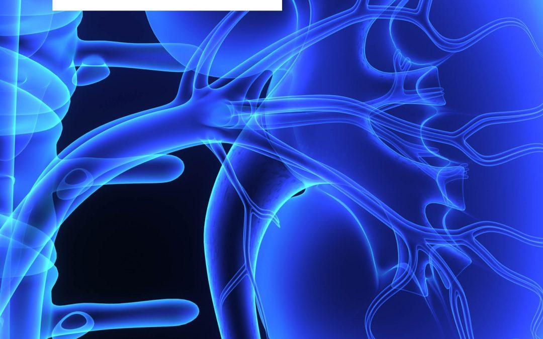 Predicting Mortality in Kidney Disease: A New Nutritional Risk Index – Professor Eiichiro Kanda, Kawasaki Medical School