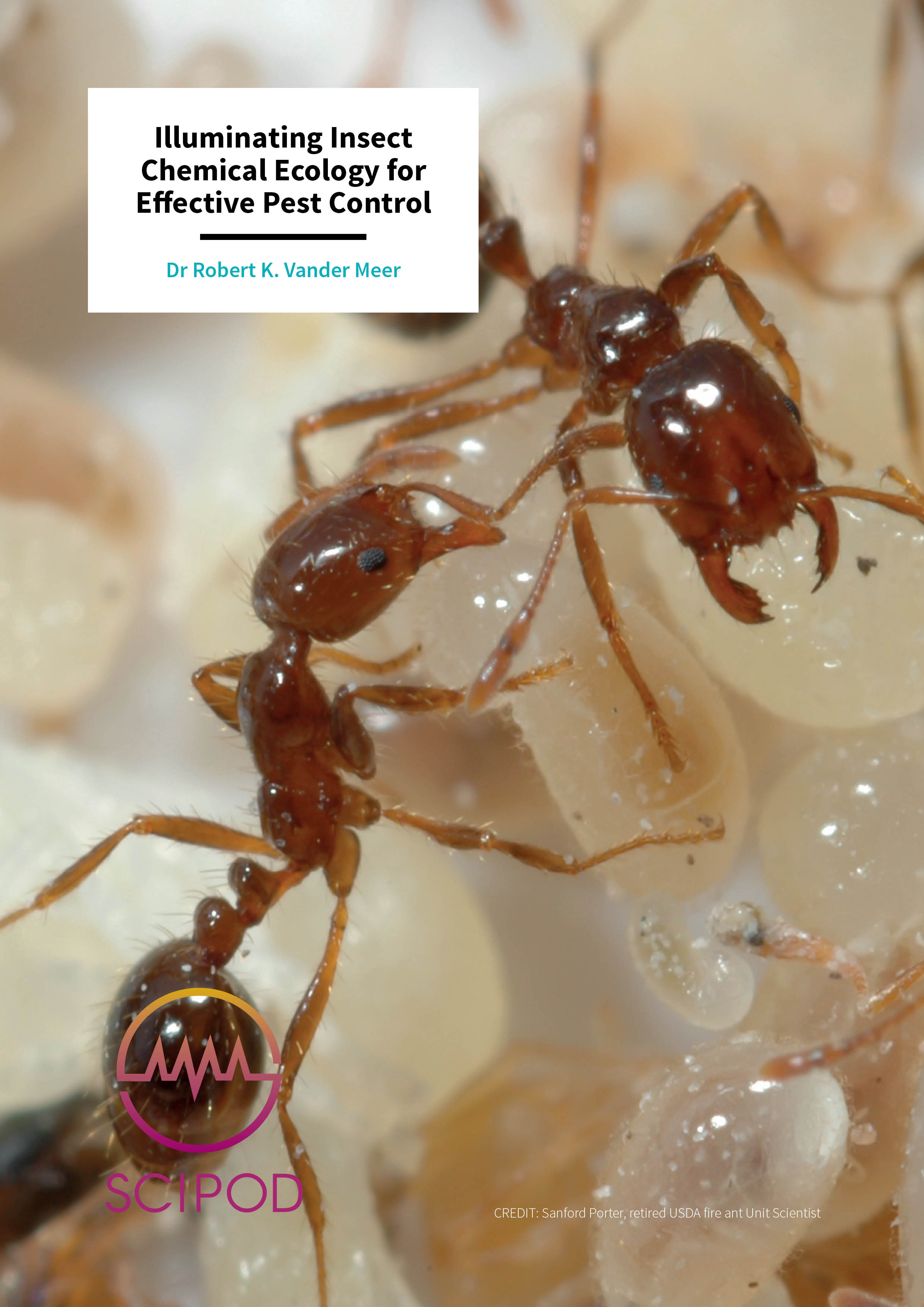 Illuminating Insect Chemical Ecology for Effective Pest Control – Dr Robert K. Vander Meer, USDA