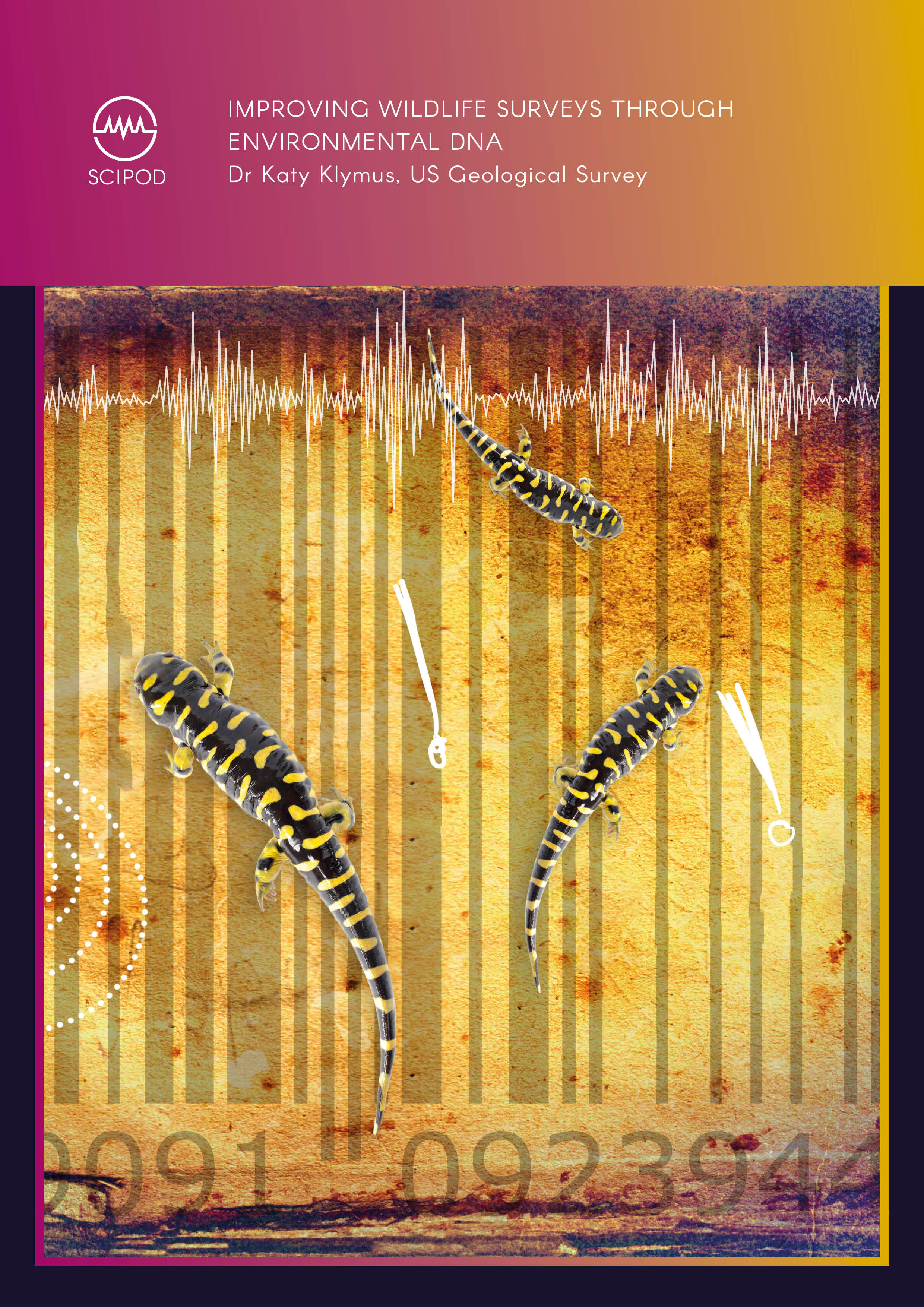 Improving Wildlife Surveys Through Environmental DNA – Dr Katy Klymus