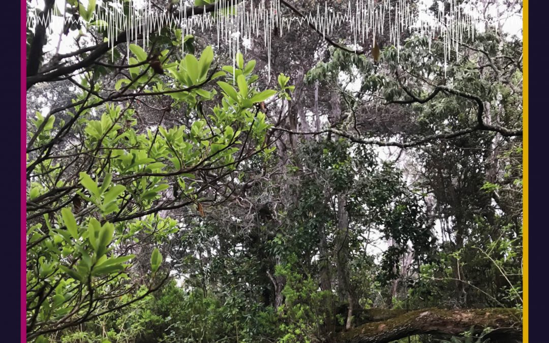 Teaching Change Bioculturally Grounded, Place – Based Environmental Education In Hawaiʻi