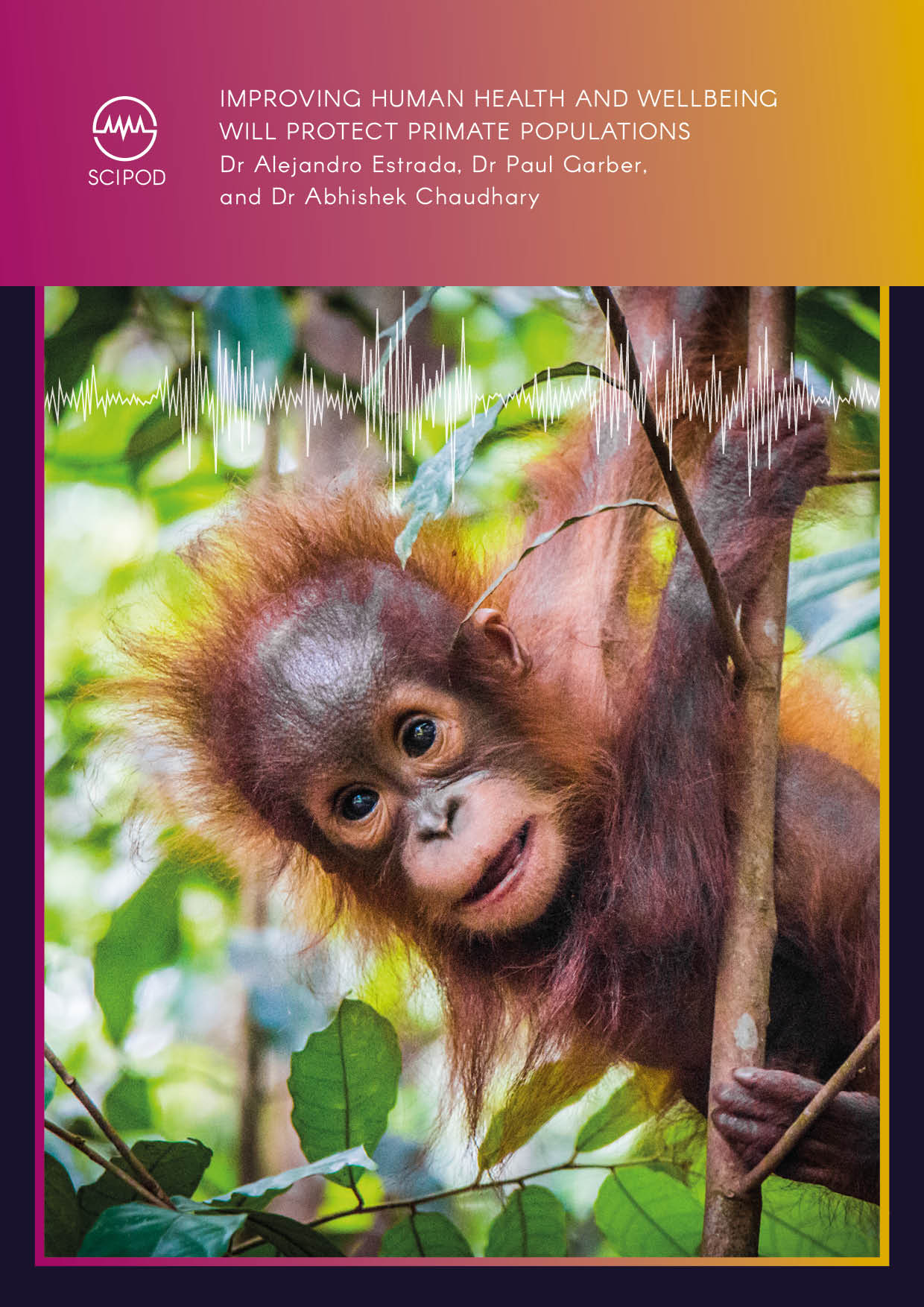 Improving Human Health and Wellbeing Will Protect Primate Populations – Dr Alejandro Estrada, Dr Paul Garber, and Dr Abhishek Chaudhary