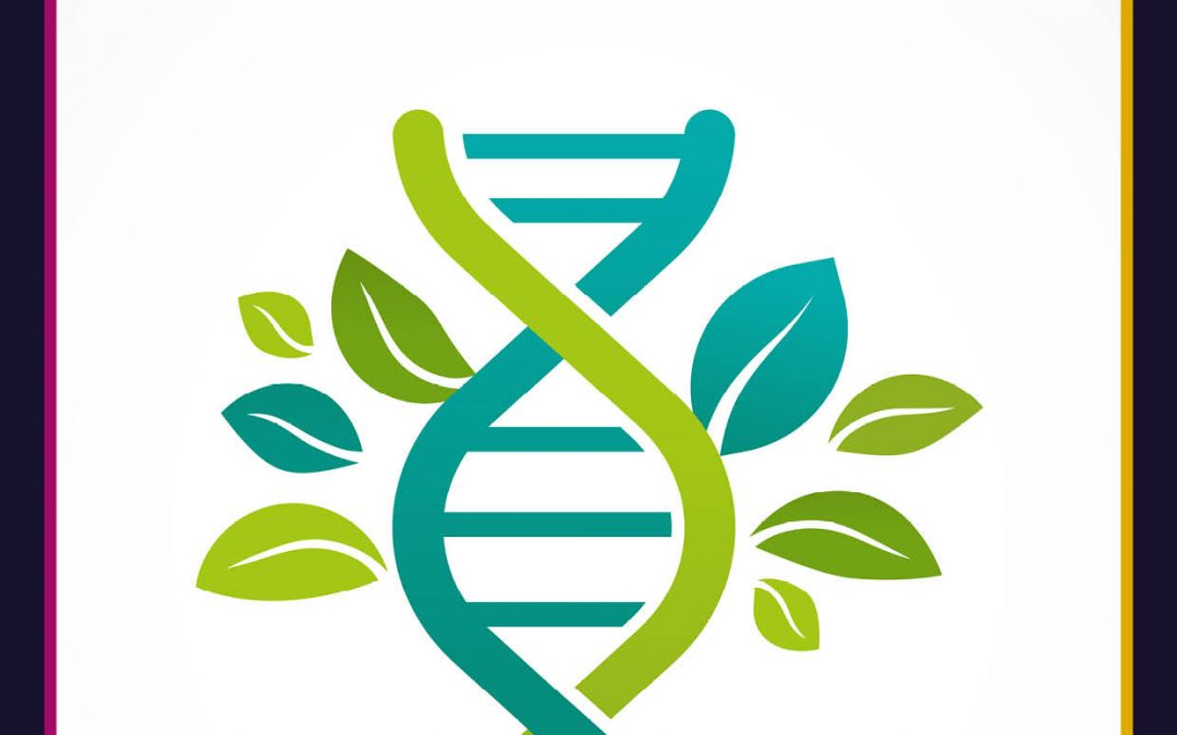 Assessing the Relevance of Off-Target Changes in Gene Edited Crops