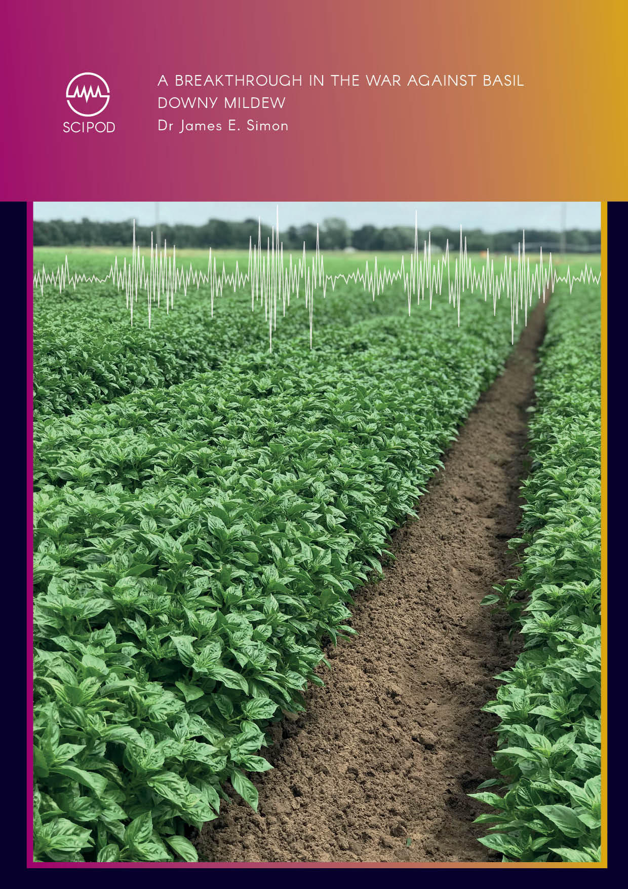A Breakthrough in the War Against Basil Downy Mildew, Dr James Simon at Rutgers University
