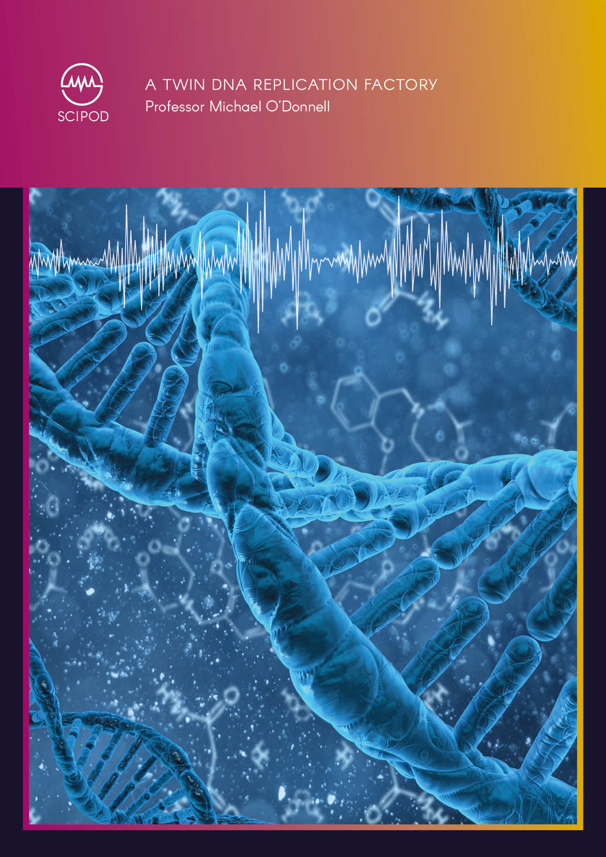 A Twin DNA Replication Factory – Professor Michael O'Donnell, Rockefeller University
