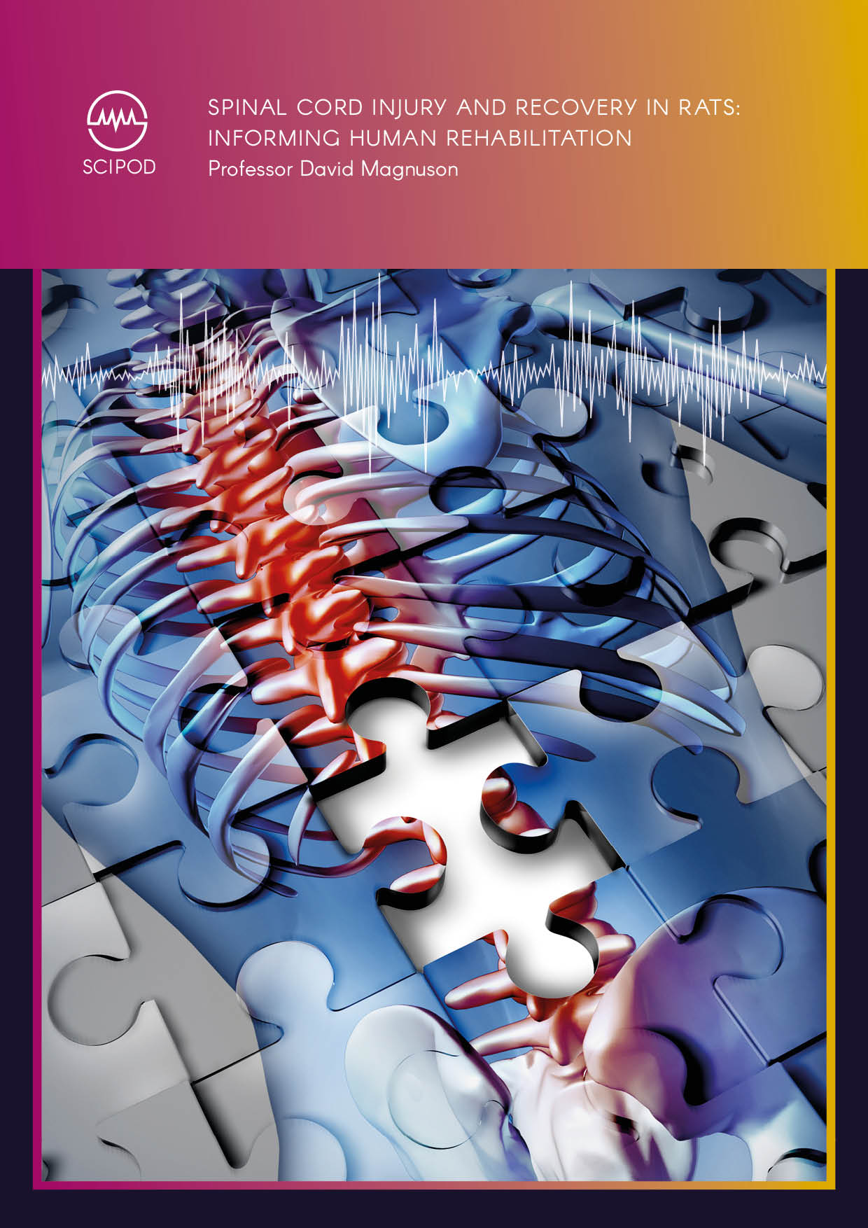 Spinal Cord Injury and Recovery in Rats Informing Human Rehabilitation – Professor David Magnuson, University of Louisville