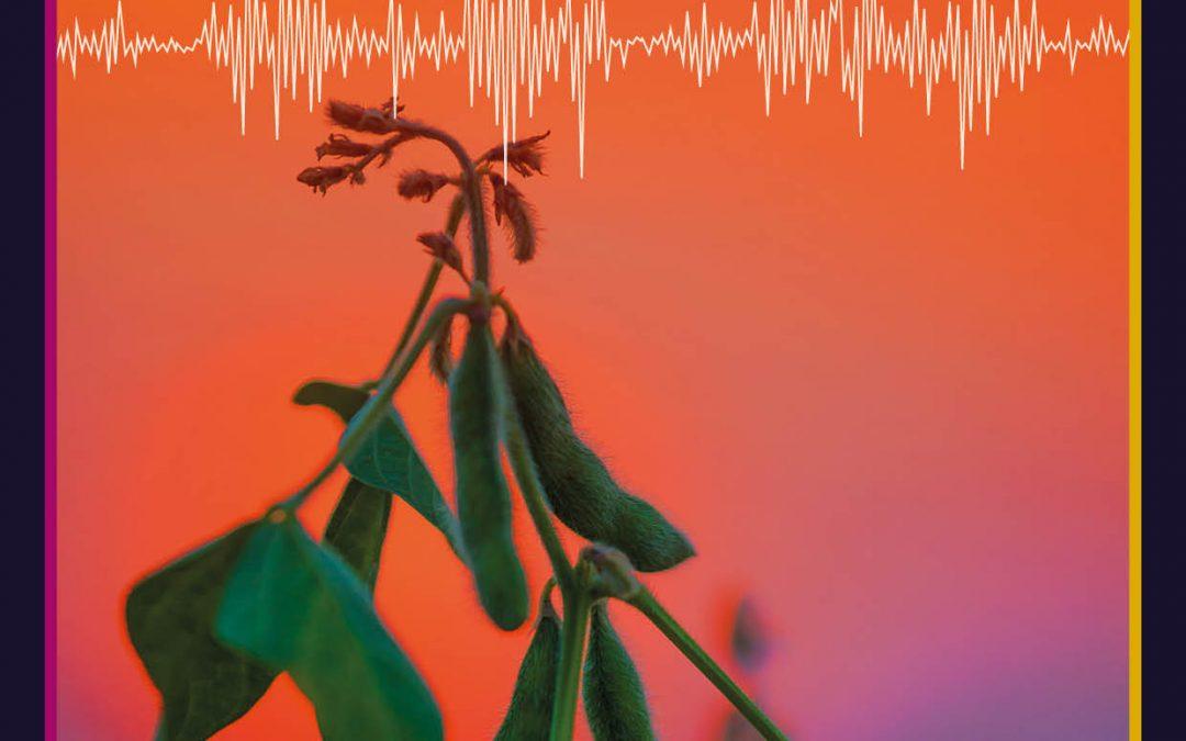 Genetically Engineering Our Future Food Security – Dr Richard Goodman, University of Nebraska-Lincoln