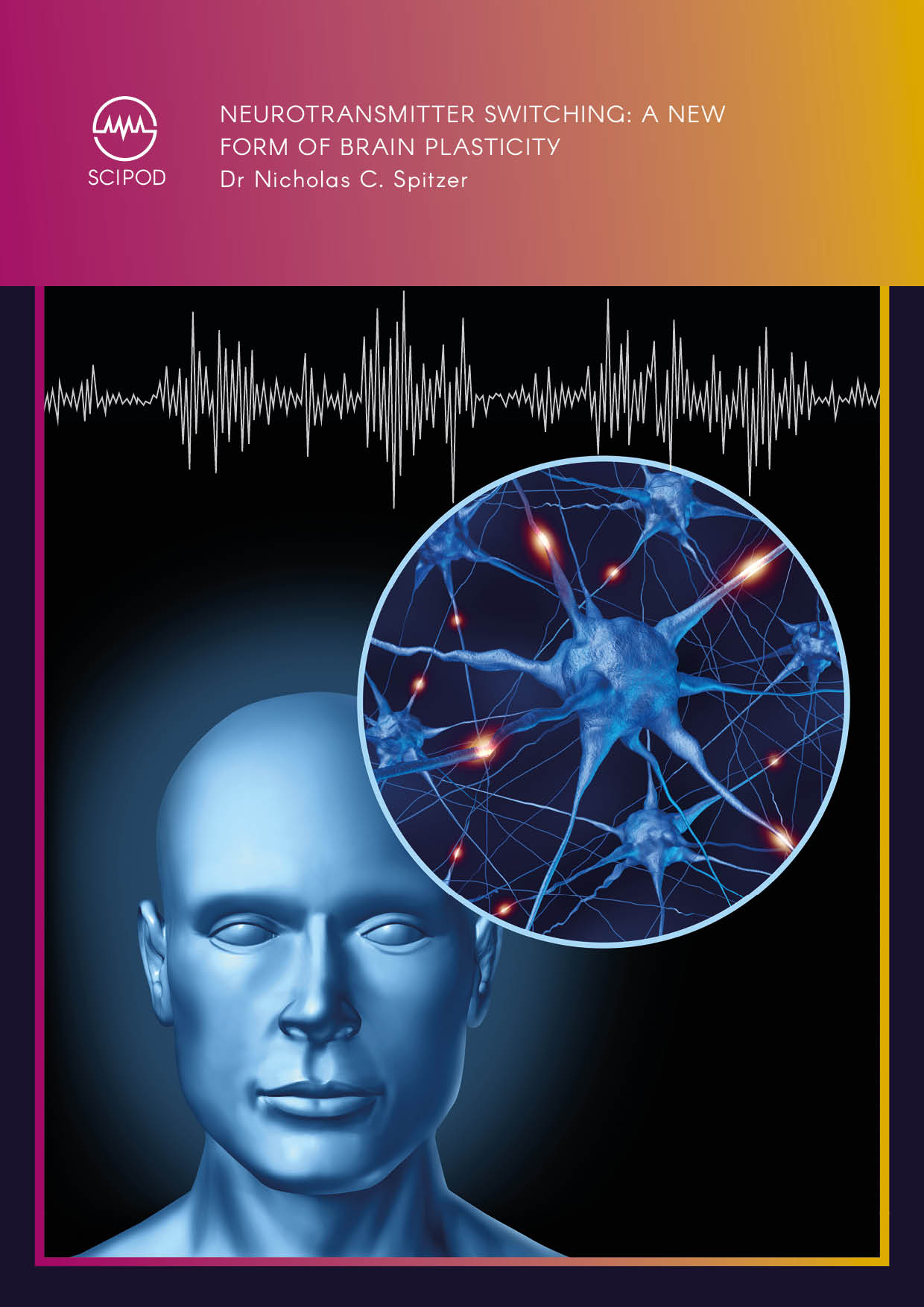 Neurotransmitter Switching A New Form Of Brain Plasticity – Dr Nicholas Spitzer