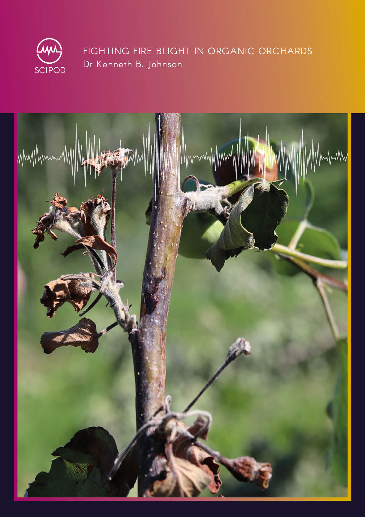 Fighting Fire Blight in Organic Orchards – Dr Kenneth Johnson, Oregon State University